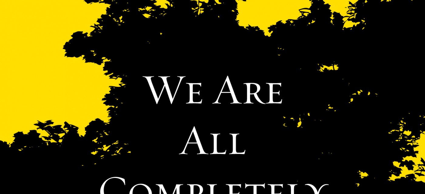 We Are All Completely Beside Ourselves Book Cover